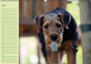 Puppies Birthday Calendar / UK-Version (Wall Calendar perpetual