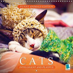 Funny animals edition: Cats - intelligent and playful (Wall Cale