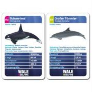 Wale und Delfine Quartett