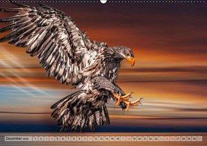 Faszinierende Greifvögel hautnah (Wandkalender 2016 DIN A2 quer)