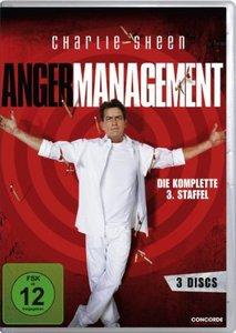 Anger Management - Staffel 3