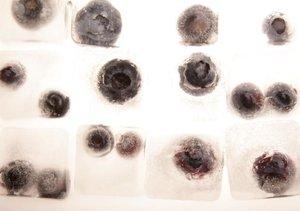 Eiskalte Früchte (Tischaufsteller DIN A5 quer)