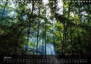 Did someone say Dobrogea? (Wall Calendar 2015 DIN A4 Landscape)