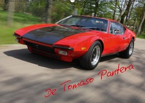 Bau, S: Tomaso Pantera (Wandkalender 2015 DIN A2 quer)