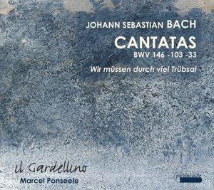 Kantaten BWV 33,103,146