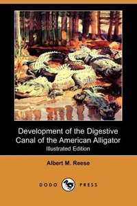 Development of the Digestive Canal of the American Alligator (Il