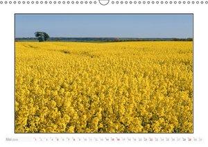 Schleswig-Holstein Jahreszeiten (Wandkalender 2016 DIN A3 quer)