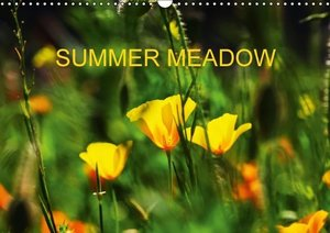 Jager, T: Summer Meadow / UK-Version