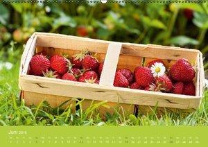 Gartenidylle (Wandkalender 2016 DIN A2 quer)
