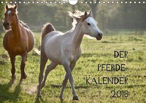 Pferdekalender