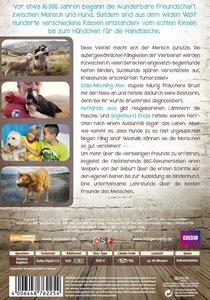 Faszination Hund - Unser Partner mit dem sechsten Sinn