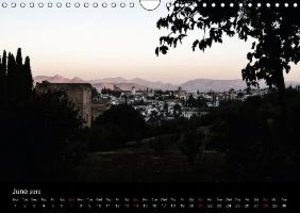 Special Moments (Wall Calendar 2015 DIN A4 Landscape)