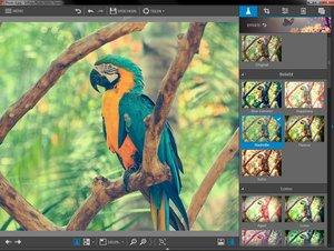 InPixio Photo Editor Home (Fotobearbeitungssoftware)