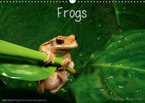 Frogs / UK-Version (Wall Calendar 2016 DIN A3 Landscape)