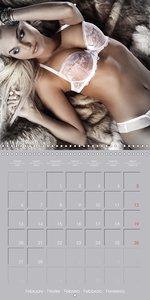 Erotica . Sensual and fascinating Moments (Wall Calendar 2017 30
