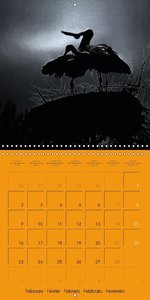 Darkness and Hope (Wall Calendar 2015 300 &times 300 mm Square)