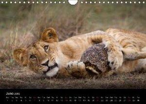 Kenyan Wildlife (Wall Calendar 2015 DIN A4 Landscape)