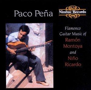 Flamenco Guitar Music/Pena