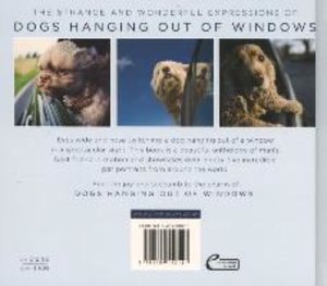 Dogs Hanging out of Windows