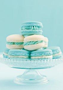 Macarons (Posterbuch DIN A4 hoch)