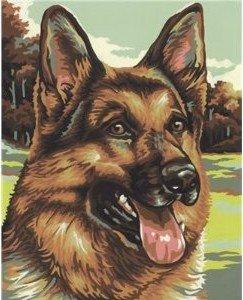 Schipper 609240382 - Schäferhund, MNZ, Malen nach Zahlen