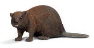 Schleich 14693 - Wild Life: Biber