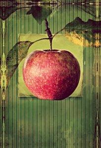 Premium Textil-Leinwand 50 cm x 75 cm hoch Apfel im vintagelook