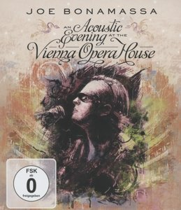 An Acoustic Evening At The Vienna Opera