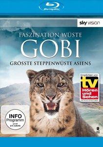 Faszination Wüste - Gobi: Grösste Steppenwüste Asiens