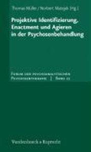 Projektive Identifizierung, Enactment und Agieren in der Psychos