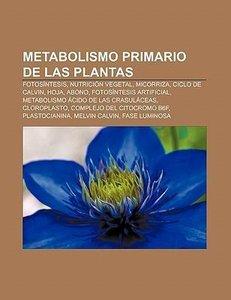 Metabolismo primario de las plantas