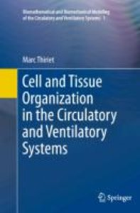 Cell and Tissue Organization in the Circulatory and Ventilatory