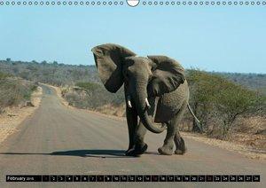 South Africa / UK-Version (Wall Calendar 2015 DIN A3 Landscape)