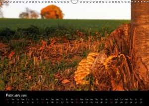 golden October / UK-Version (Wall Calendar 2015 DIN A3 Landscape