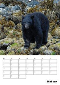 Tierwelt Alaskas
