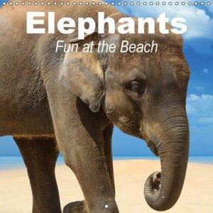 Elephants . Fun at the Beach (Wall Calendar 2015 300 × 300 mm Sq