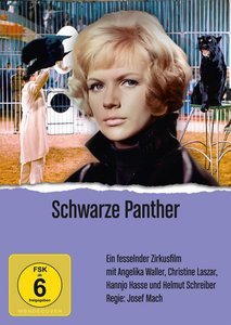 Schwarze Panther