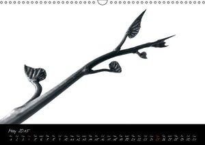 Botanica in B&W (Wall Calendar 2015 DIN A3 Landscape)