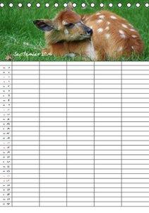 Kleine Wilde - Familienplaner (Tischkalender 2016 DIN A5 hoch)
