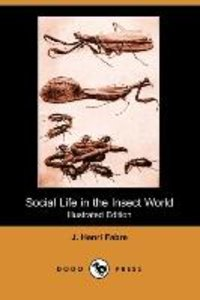 Social Life in the Insect World (Illustrated Edition) (Dodo Pres