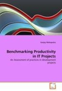 Benchmarking Productivity in IT Projects