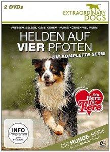 Helden auf vier Pfoten - Extraordinary Dogs
