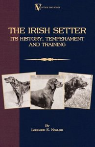 The Irish Setter: Its History, Temperament and Training