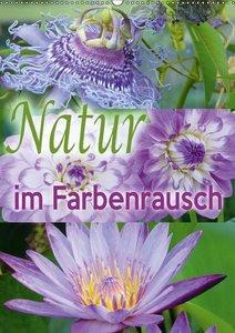 Natur im Farbenrausch