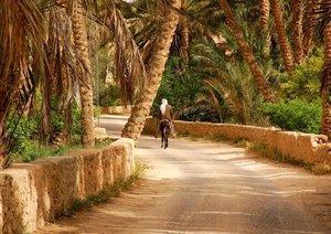 Voyage dans le Sud Tunisie (Livre poster DIN A4 horizontal)