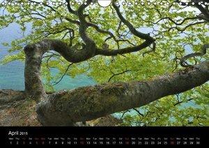 Mons Cliffs (Wall Calendar 2015 DIN A4 Landscape)