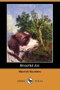 Beautiful Joe (Dodo Press)