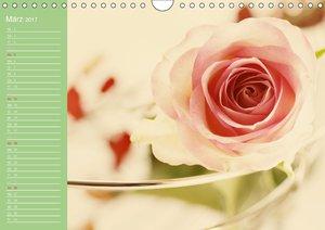 Rosen Blüten Terminkalender