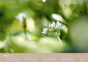 THESE PLANTS ARE WILD AND HEALTHY (Wall Calendar 2015 DIN A3 Lan