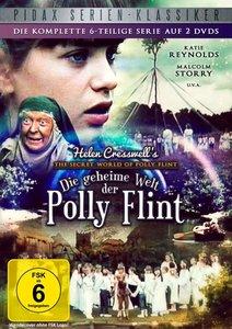 Die geheime Welt der Polly Fli